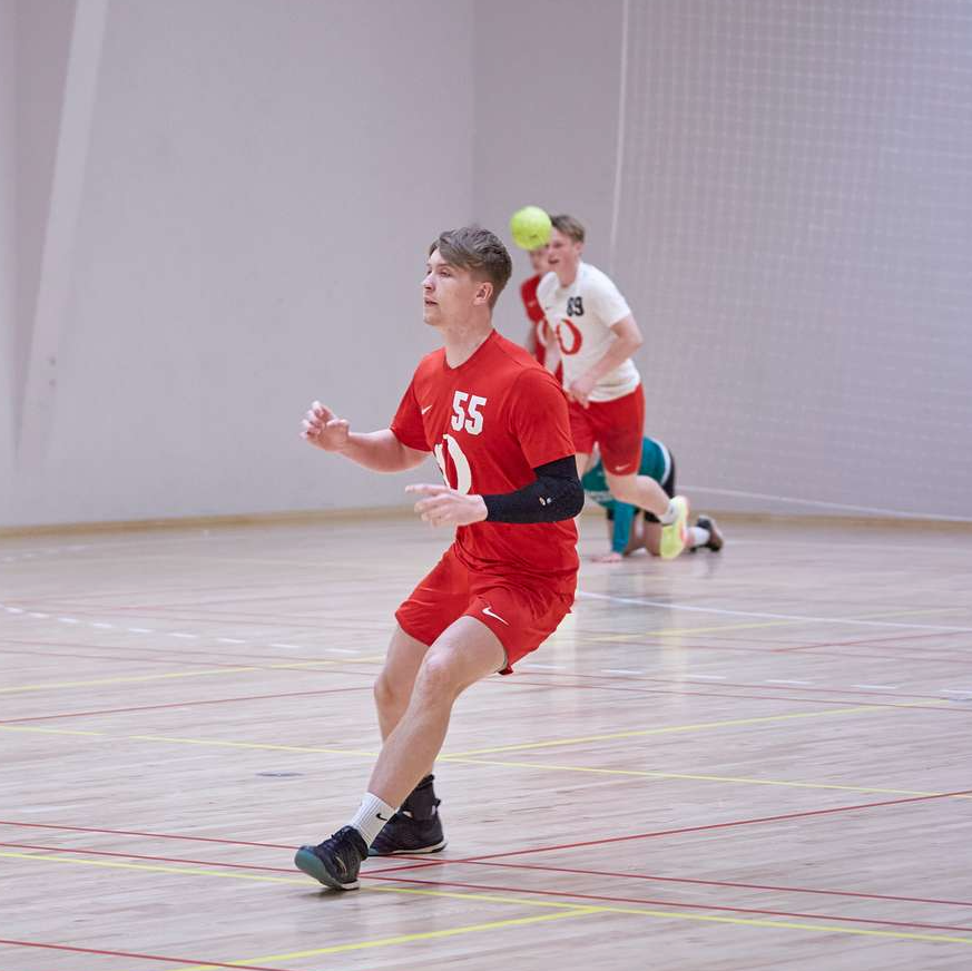 Håndbold, Kostgymnasium, Image Article