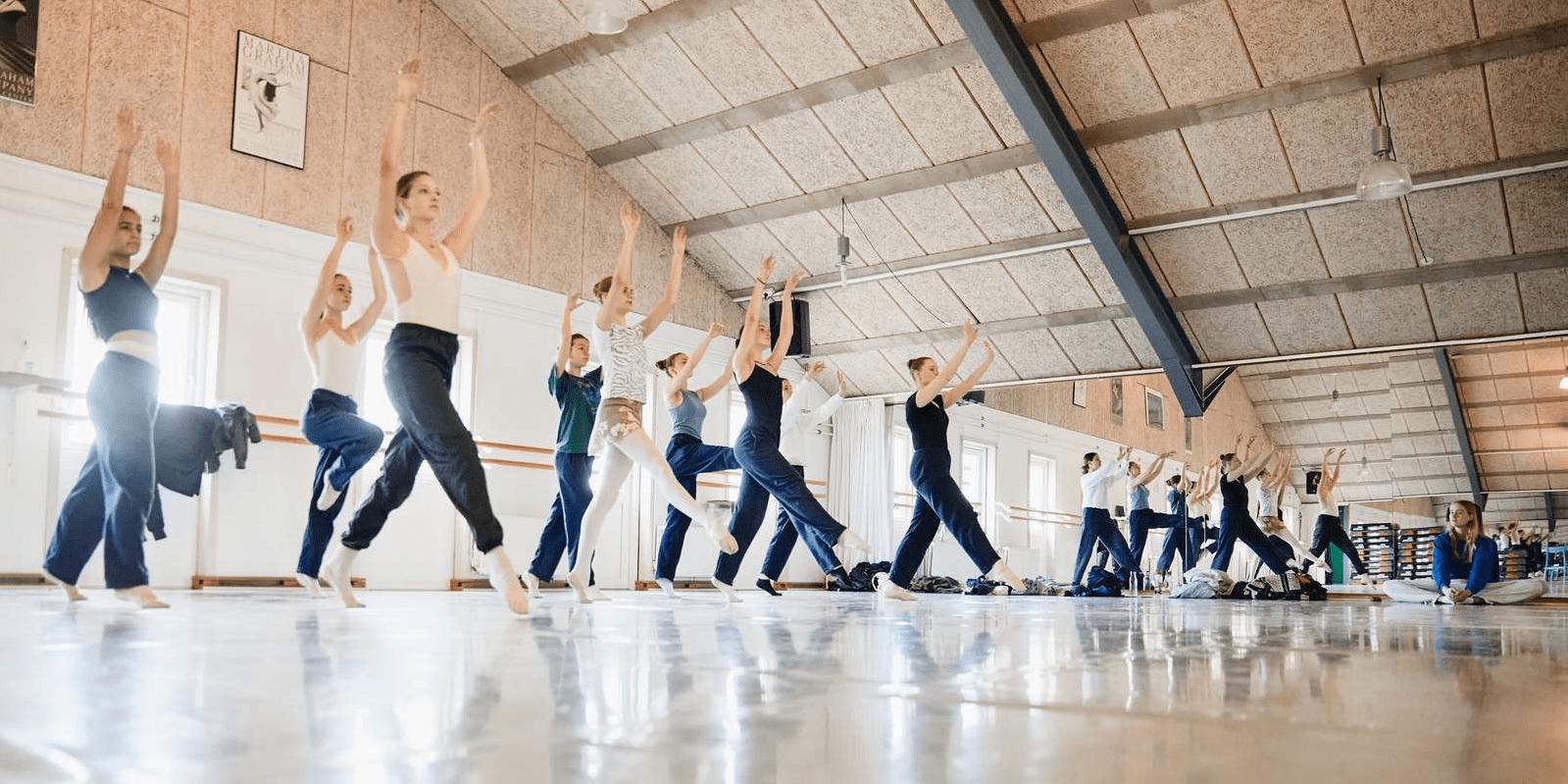 Dans Efterskole Header Kopi Min